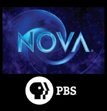Nebula Stone Pbs Nova The fabric of the Cosmos